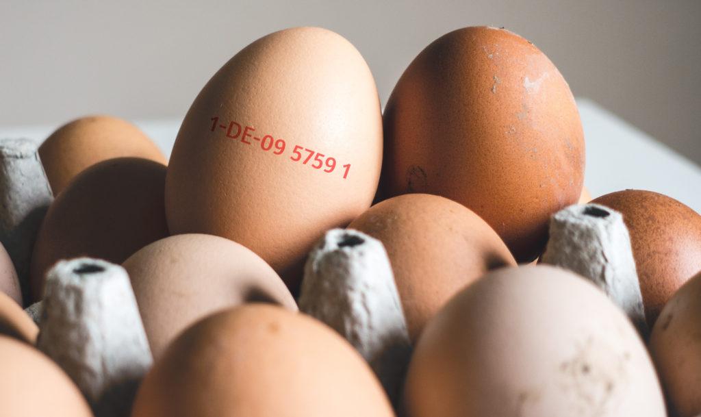 Eier in einem Eierkarton, auf einem Ei befindet sich ein Code